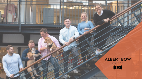 Albert Bow Recruitment Agency Group Photo on Staircase
